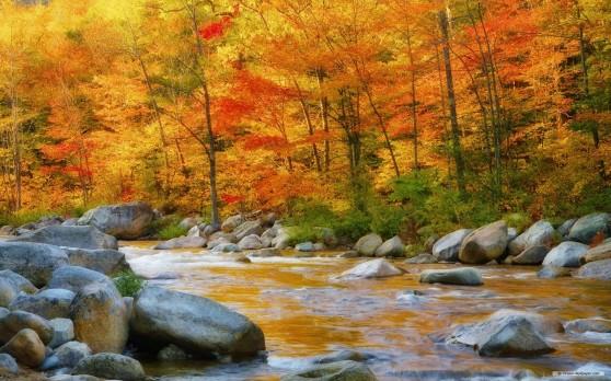 autunno 1